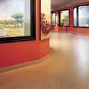 Johnsonite® Commerical Flooring for the Institutional/Public