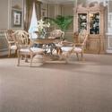 Tuftex Carpet