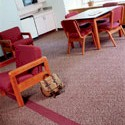 Educational Market Segment - Carpet