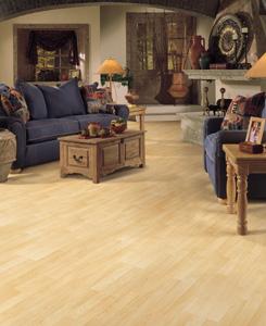 Carpet USA FamilyDen Design Idea Laminate Image ProView