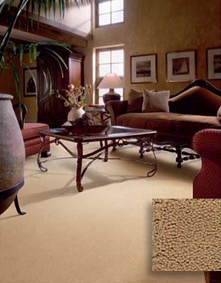 Family Room And Dens Flooring Ideas Design Decorating Options