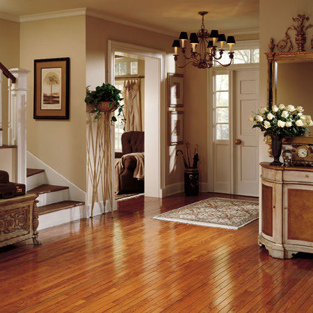 Foyers and entry flooring ideas room design and for Foyer flooring ideas