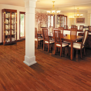 Dining Room on Dining Room Area Flooring Idea   Esteem 3 Strip   Brazilian Cherry By