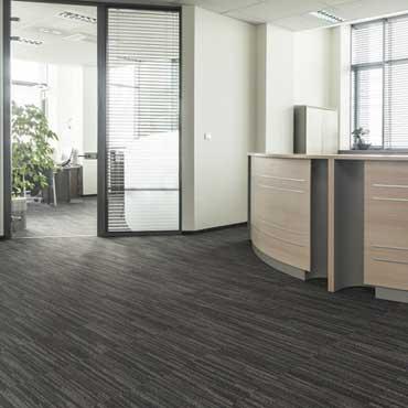 Para-Chem Carpet Adhesives
