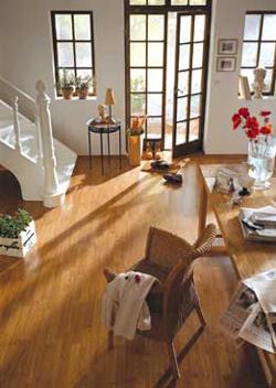 AdvantaOne Laminate Flooring - Laminate Flooring