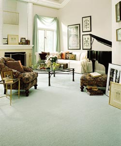 Bigelow�  Carpet - Carpeting