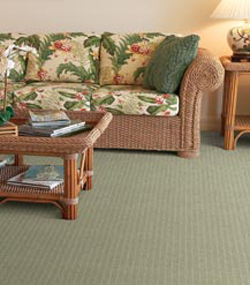 Dixie Home Carpets - Carpeting