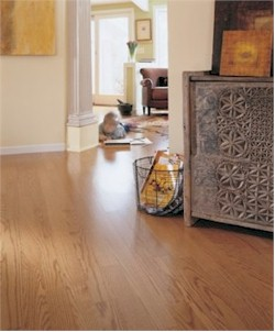EarthWerks™ Vinyl Flooring - Vinyl and Resilient
