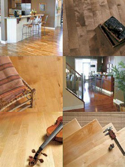 Eterna Hardwood Flooring - Wood Flooring