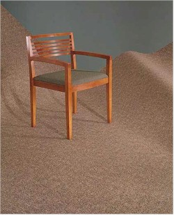 Mannington Commercial Carpet - Carpeting