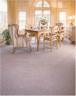 Mohawk Carpet - Carpeting