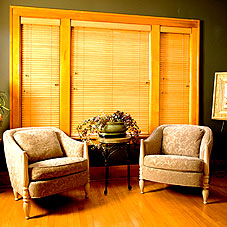 Nanik® Window Treatments