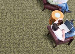 Clayton Miller Hospitality Carpet - Carpeting