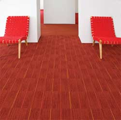 Tandus Carpet - Carpeting