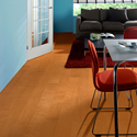 Click here for larger photo and more infomation about Copper Maple