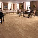 Click here for larger photo of Shaw Laminate - Natural Accents