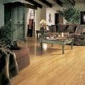Click here for larger photo and more infomation about Red Oak Doeskin