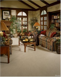 In Warren MI Shop At Villa Carpets Inc For All Your